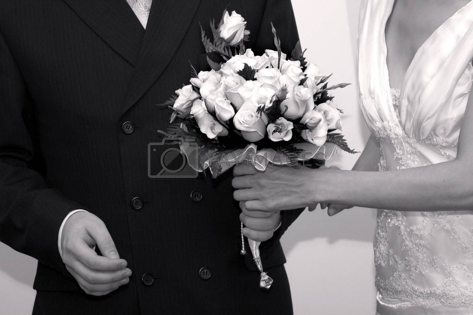 Royalty free image of Bride and groom by janza