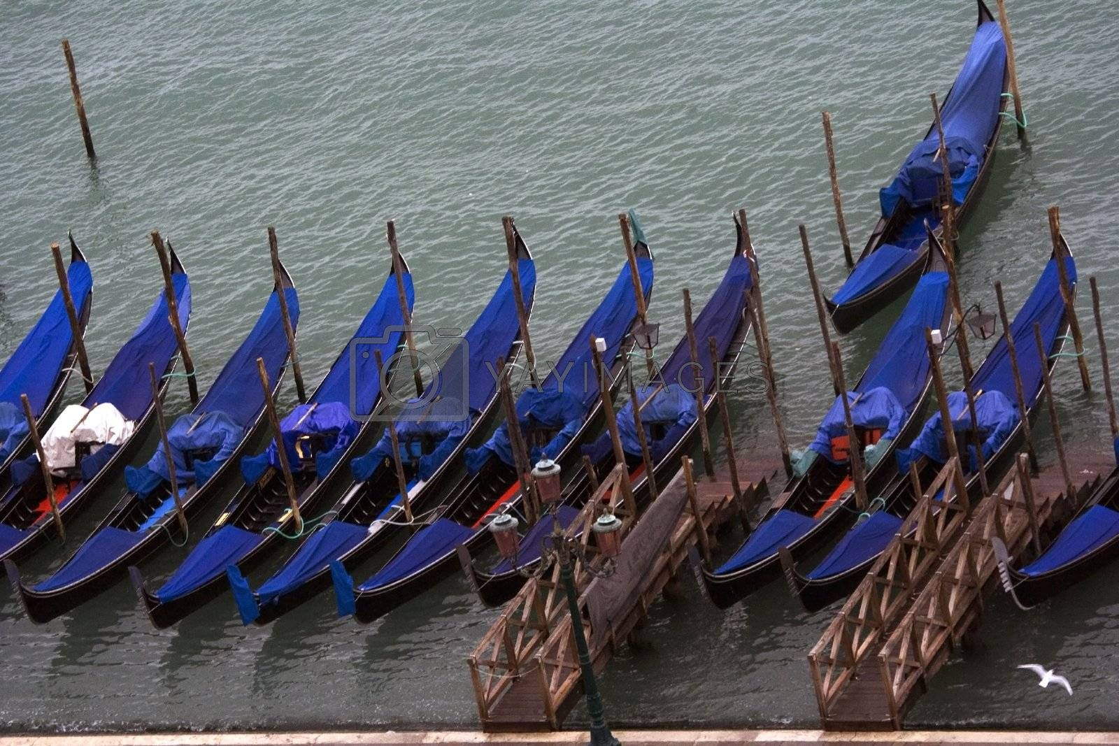 Royalty free image of Gondola parking in Venice by janza