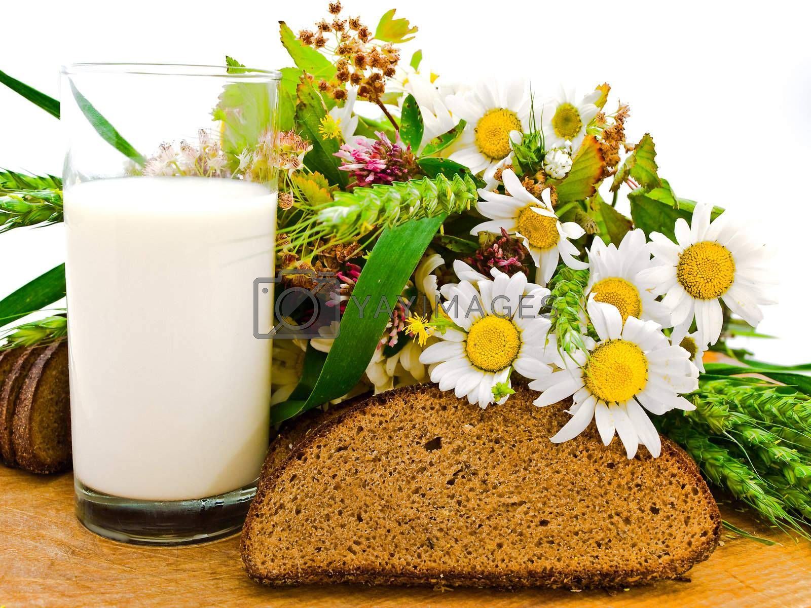 Royalty free image of bread milk and camomile   by SNR