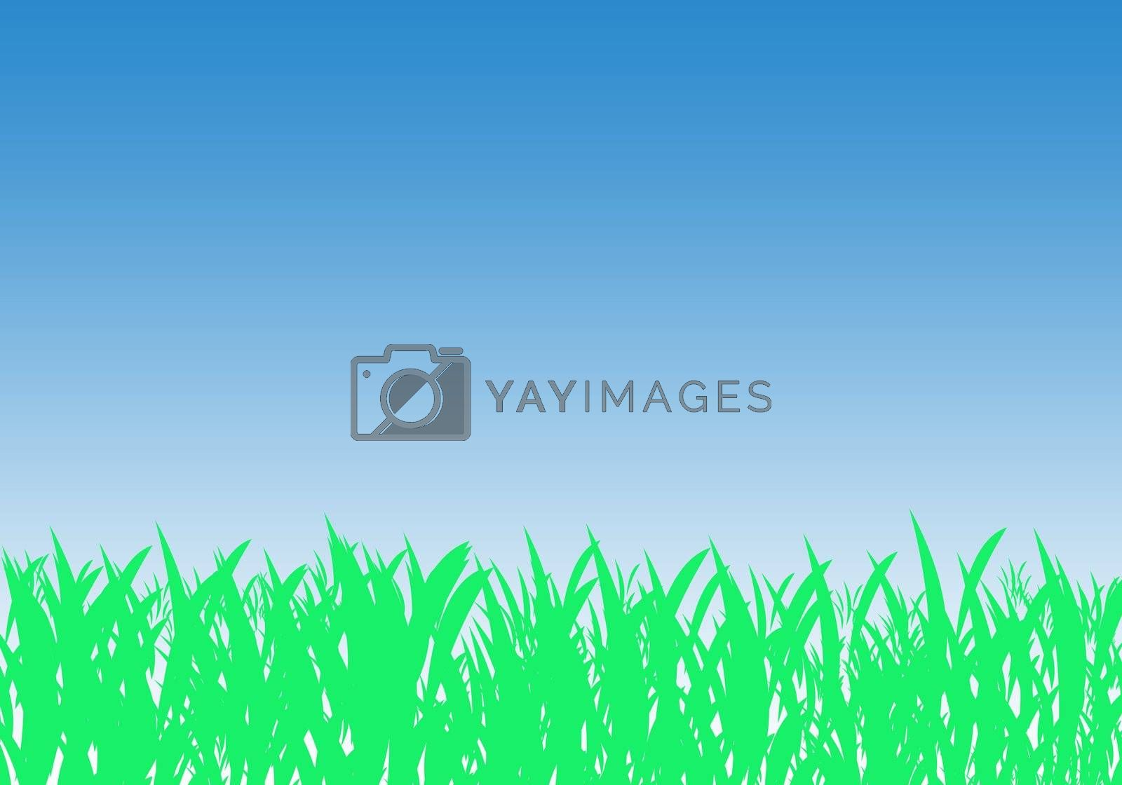 Royalty free image of Green grass and blue sky by speedfighter