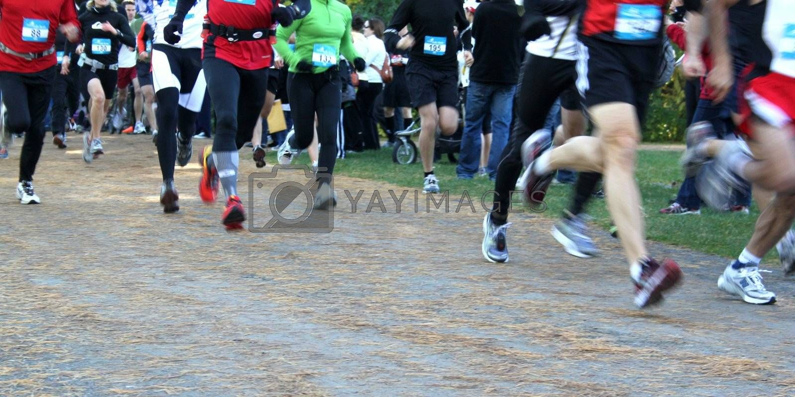 Runners in a charity marathon