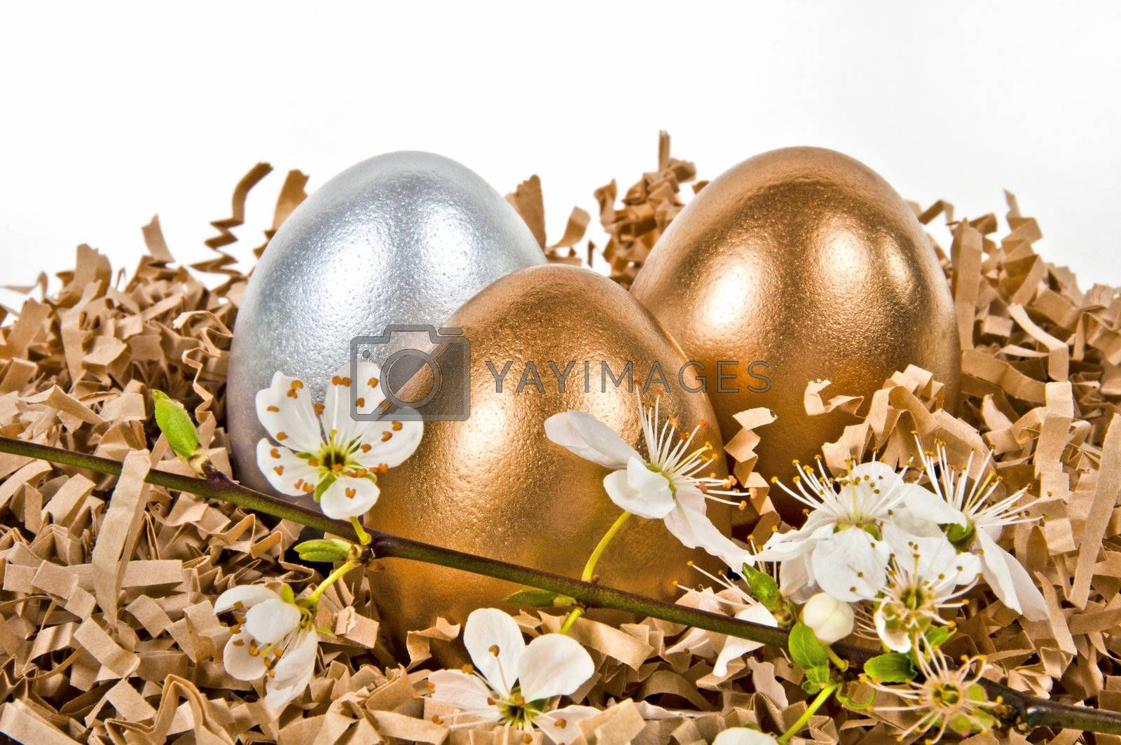 Golden and silver eggs in the nest.