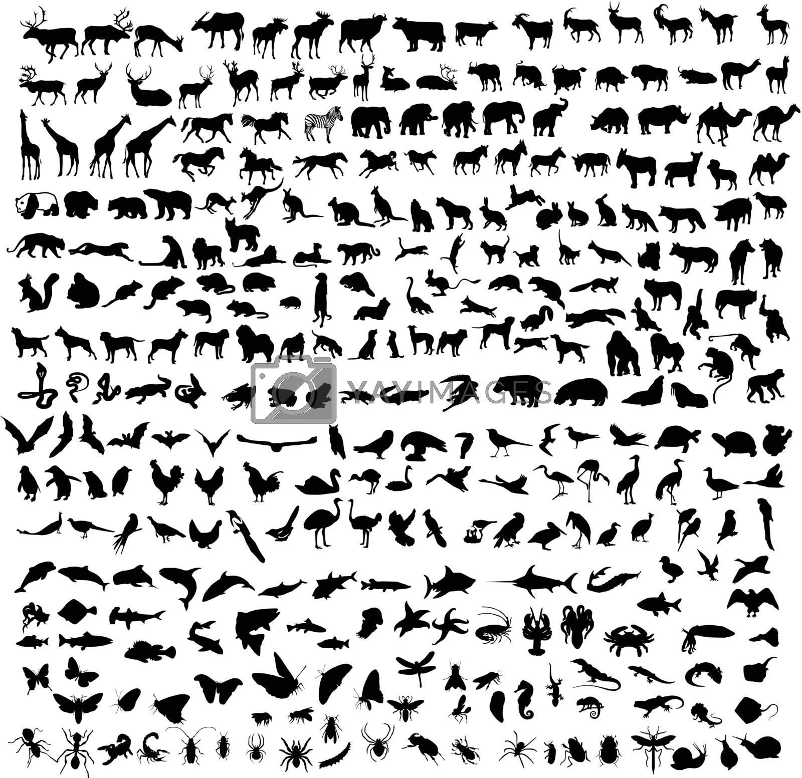 300 black silhouettes of animals