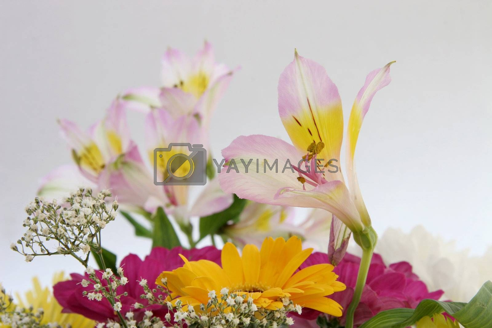 cut flowers in a bouquet by leafy