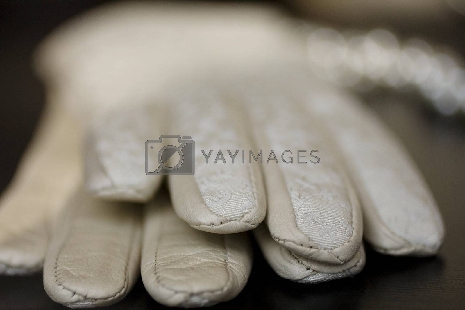 Gloves in embroidered leather