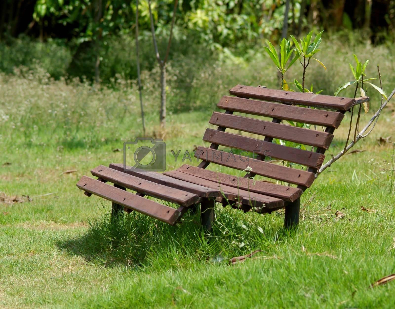 Bench by epixx