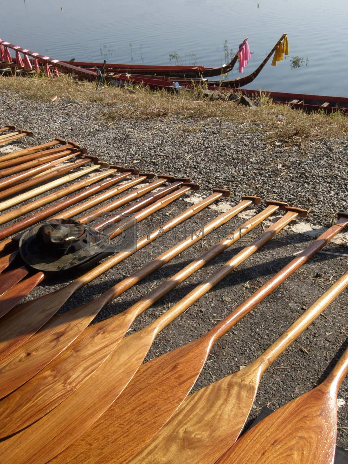 Oars for a dragonboat competition by epixx