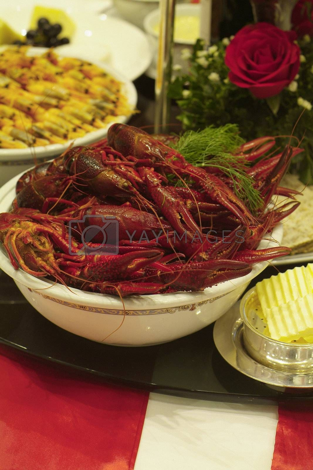 Crayfish and shrimps by epixx