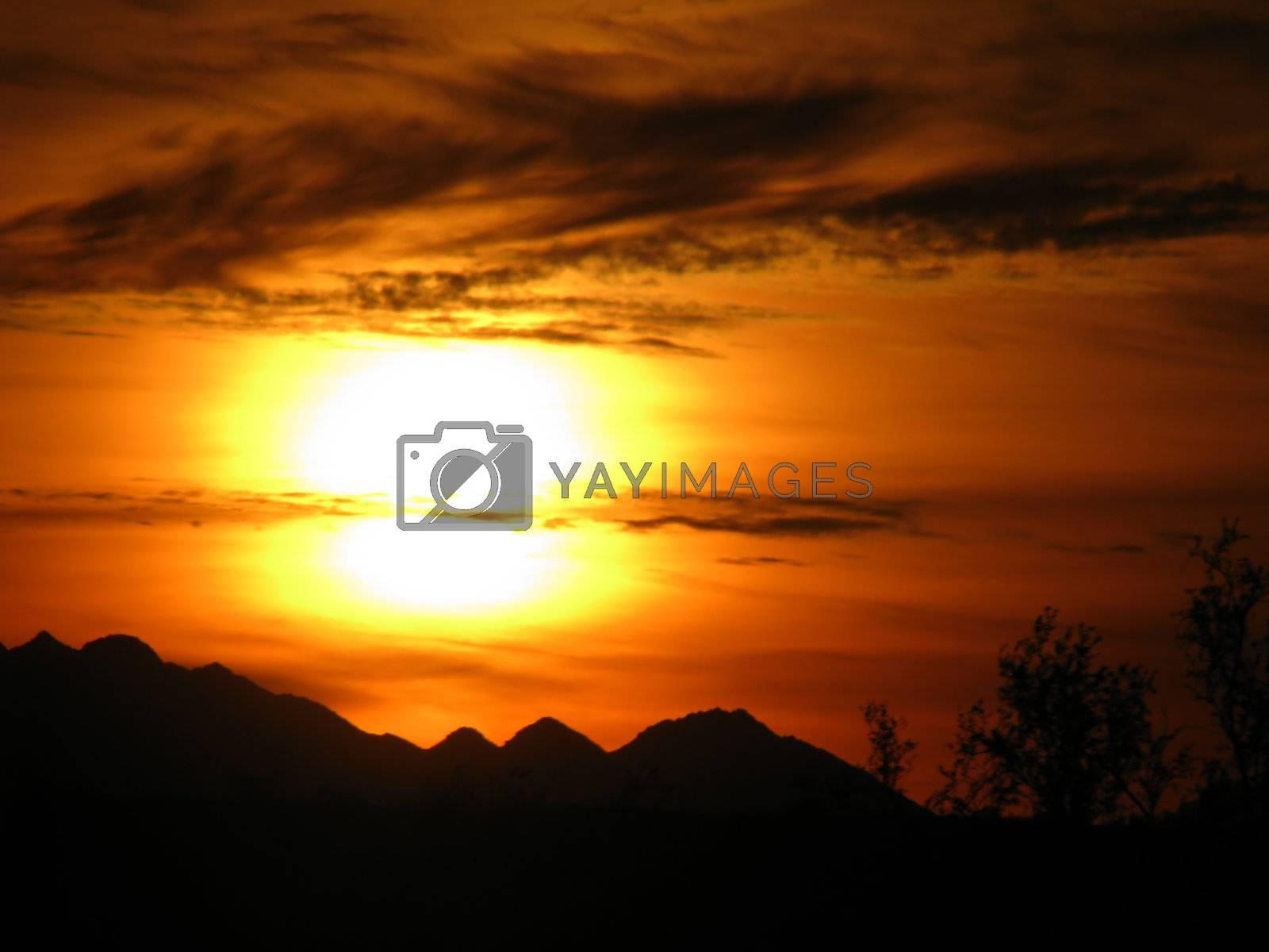 Royalty free image of Arizona Desert Sunset v2 by mwp1969