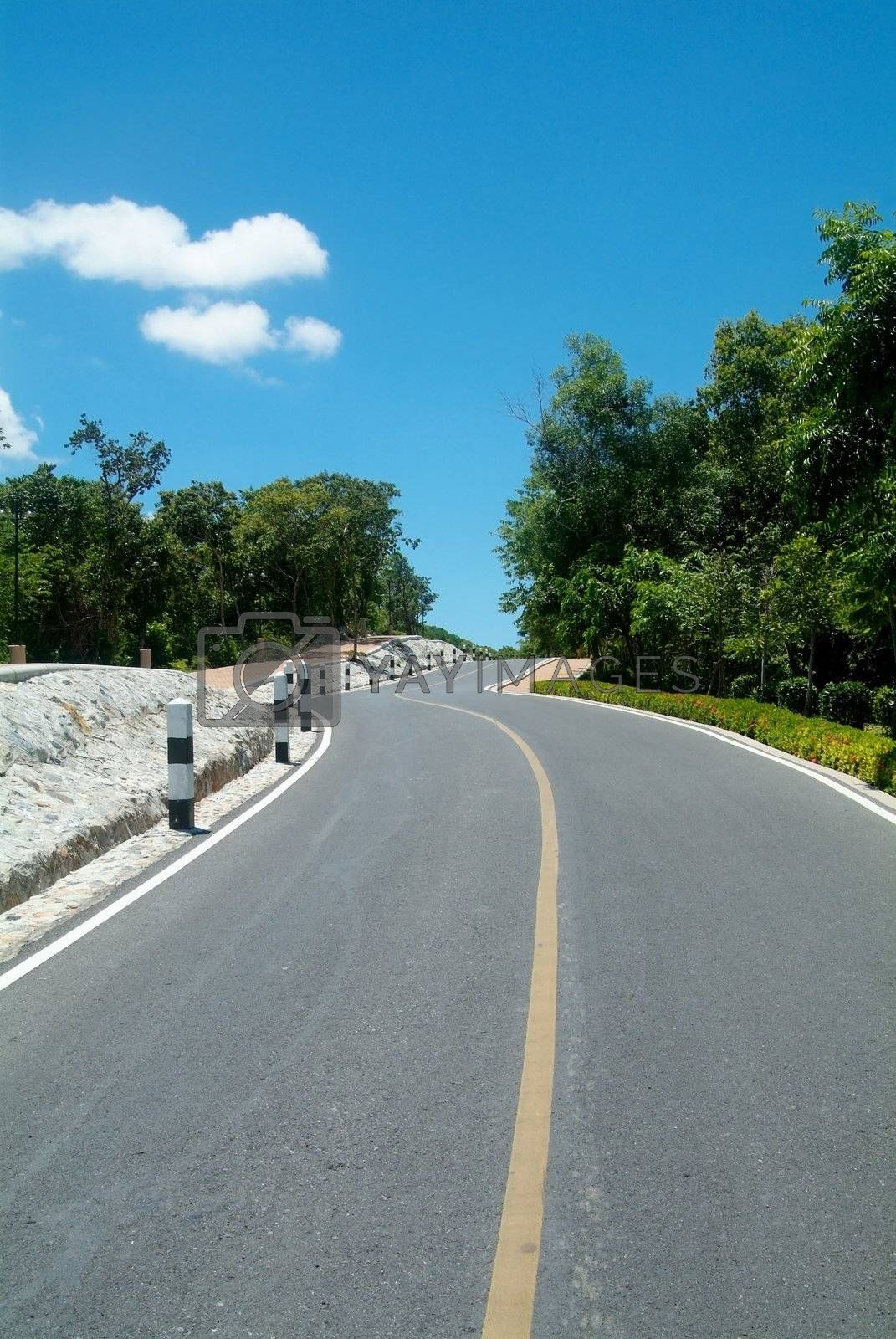 Royalty free image of Winding road over a hill by epixx