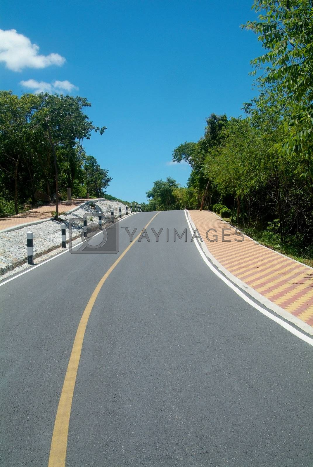 Royalty free image of Country-road over a hill by epixx