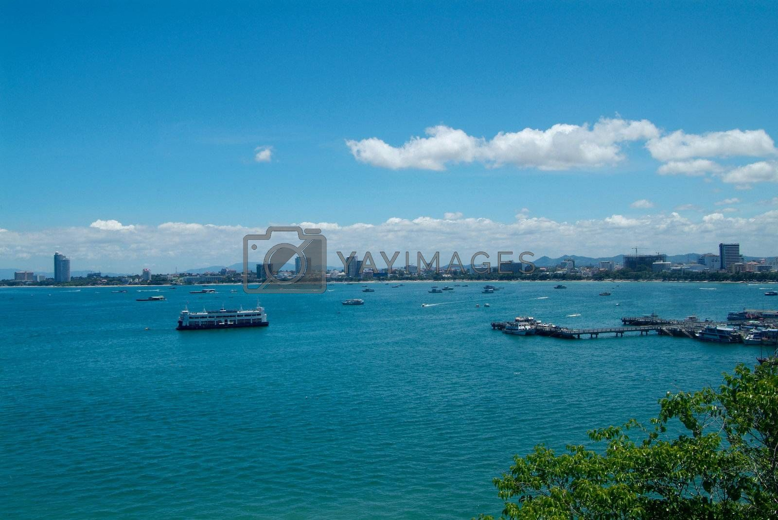 Royalty free image of Pattaya skyline by epixx