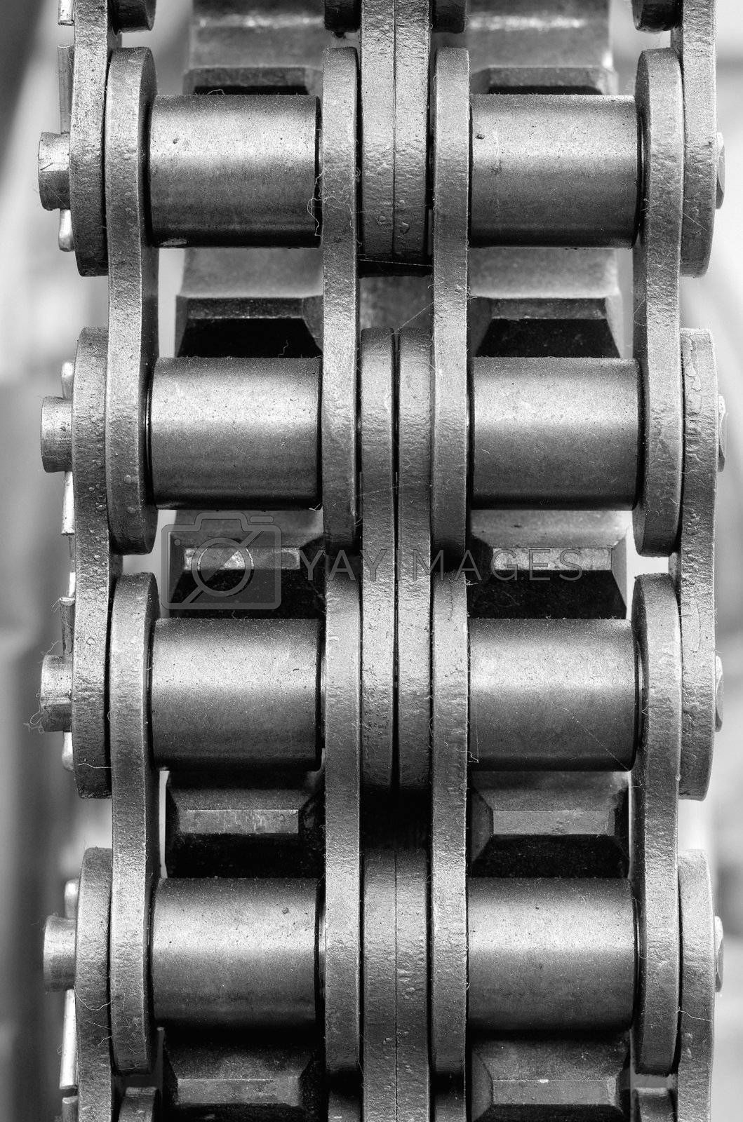 Royalty free image of Chain and cogwheel by epixx