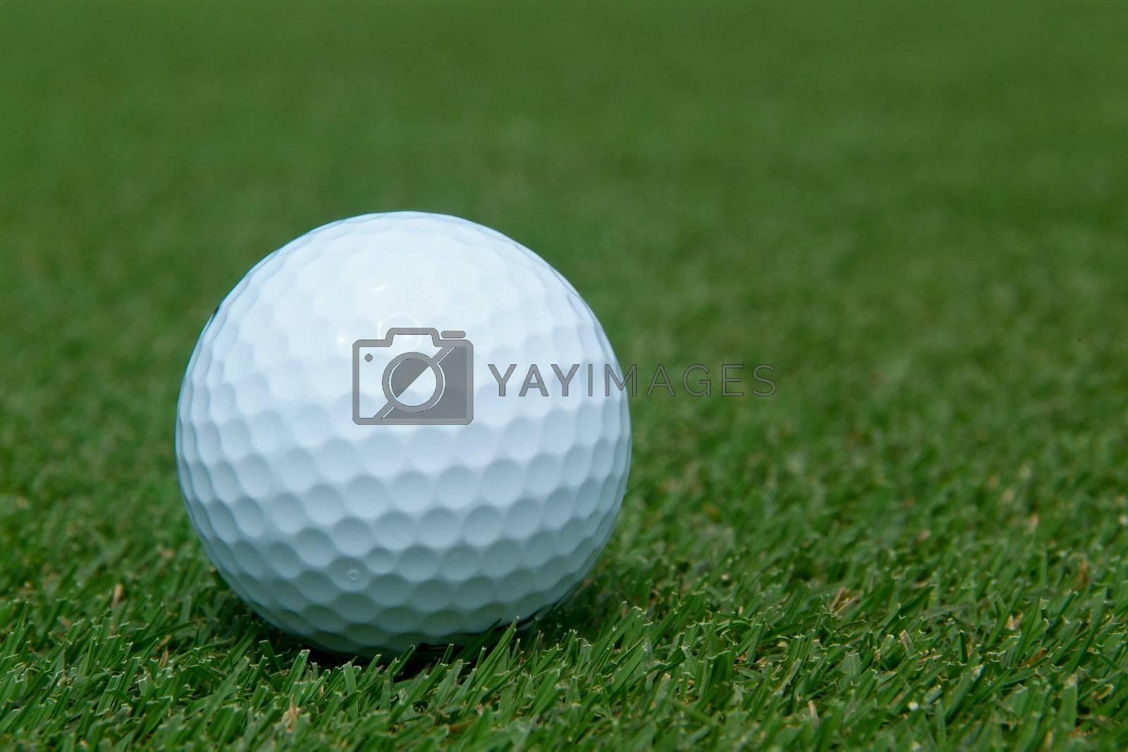 Golf-ball on green by epixx