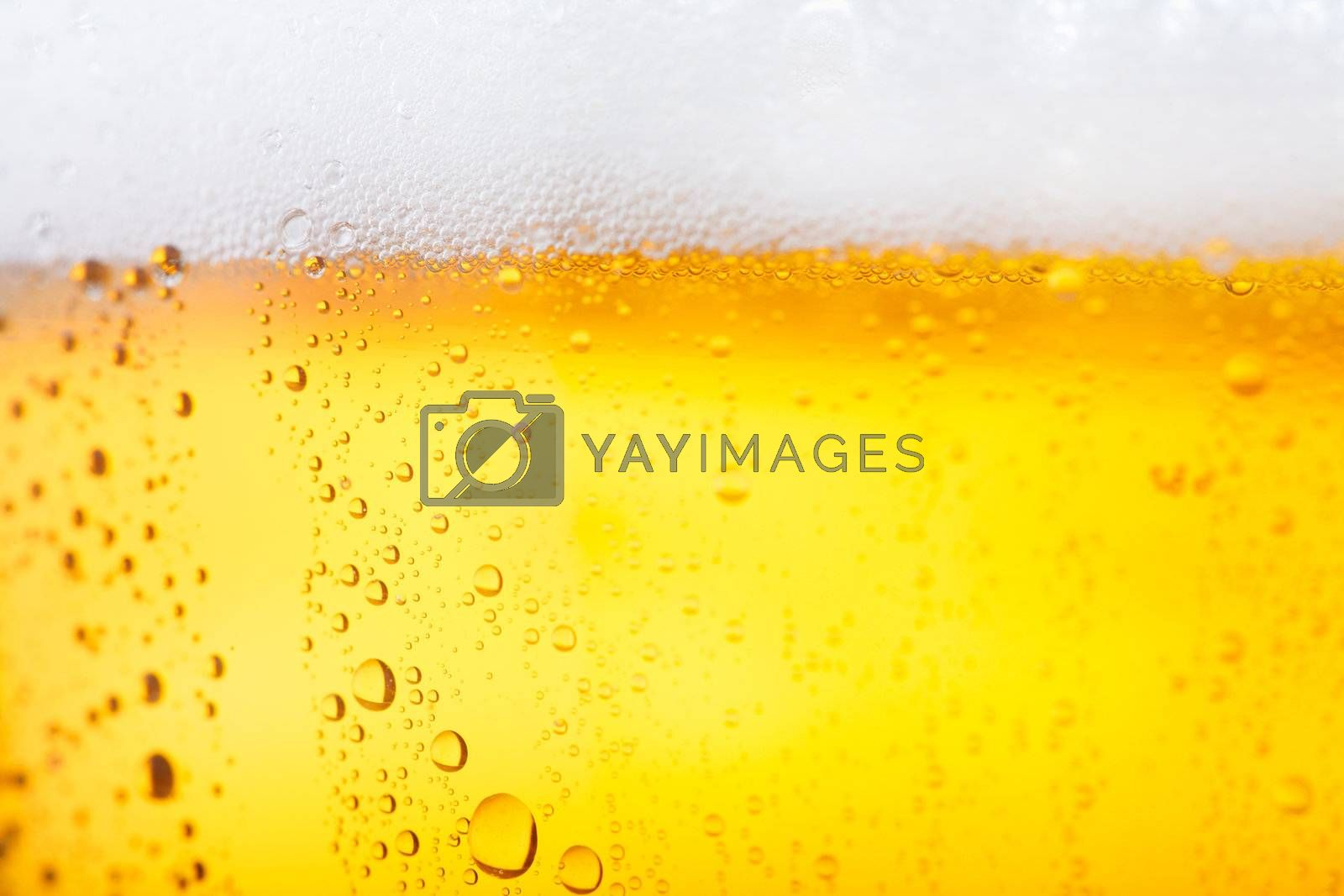 Fresh pils beer with froth and condensed water pearls