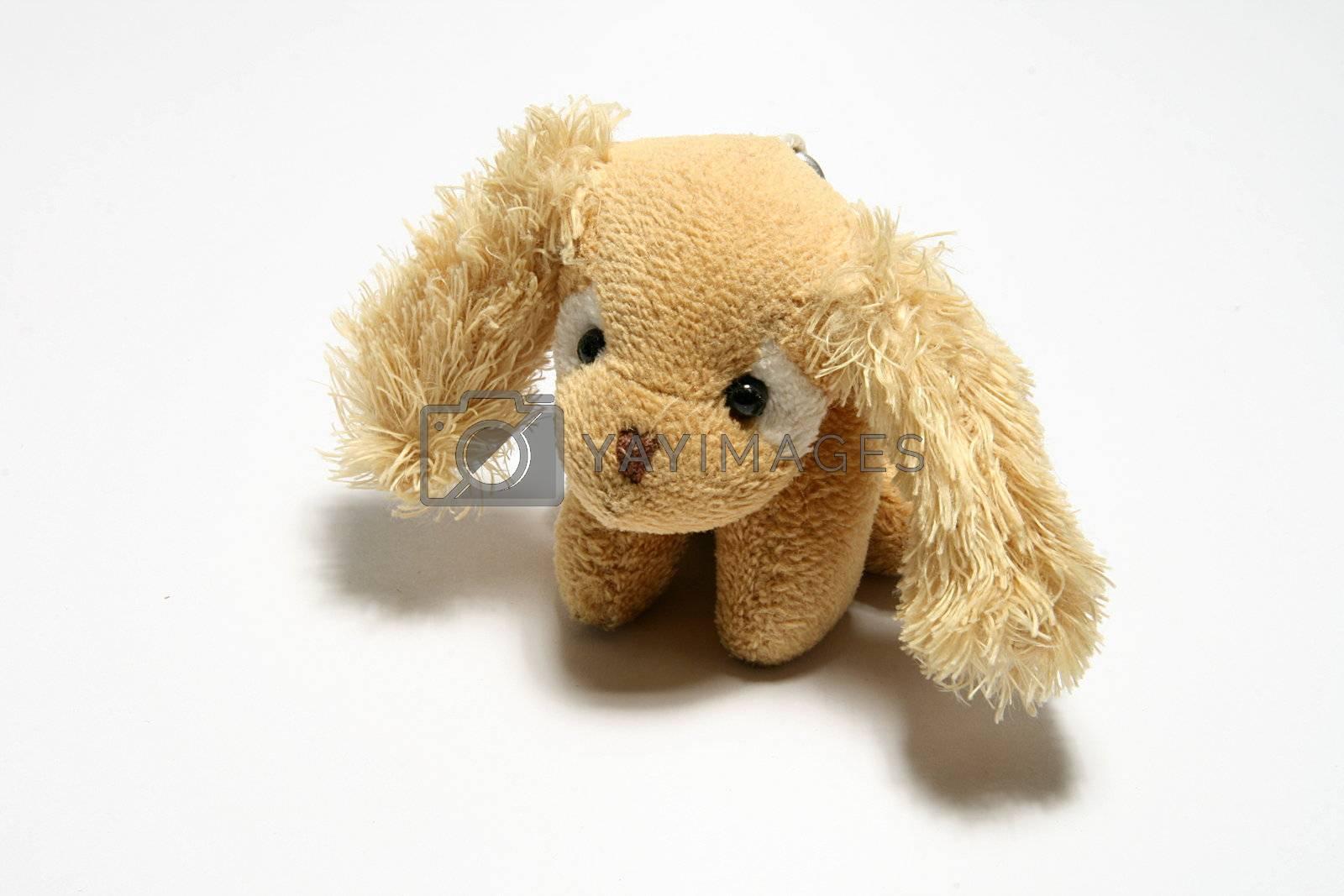 toy dog by alkorphoto