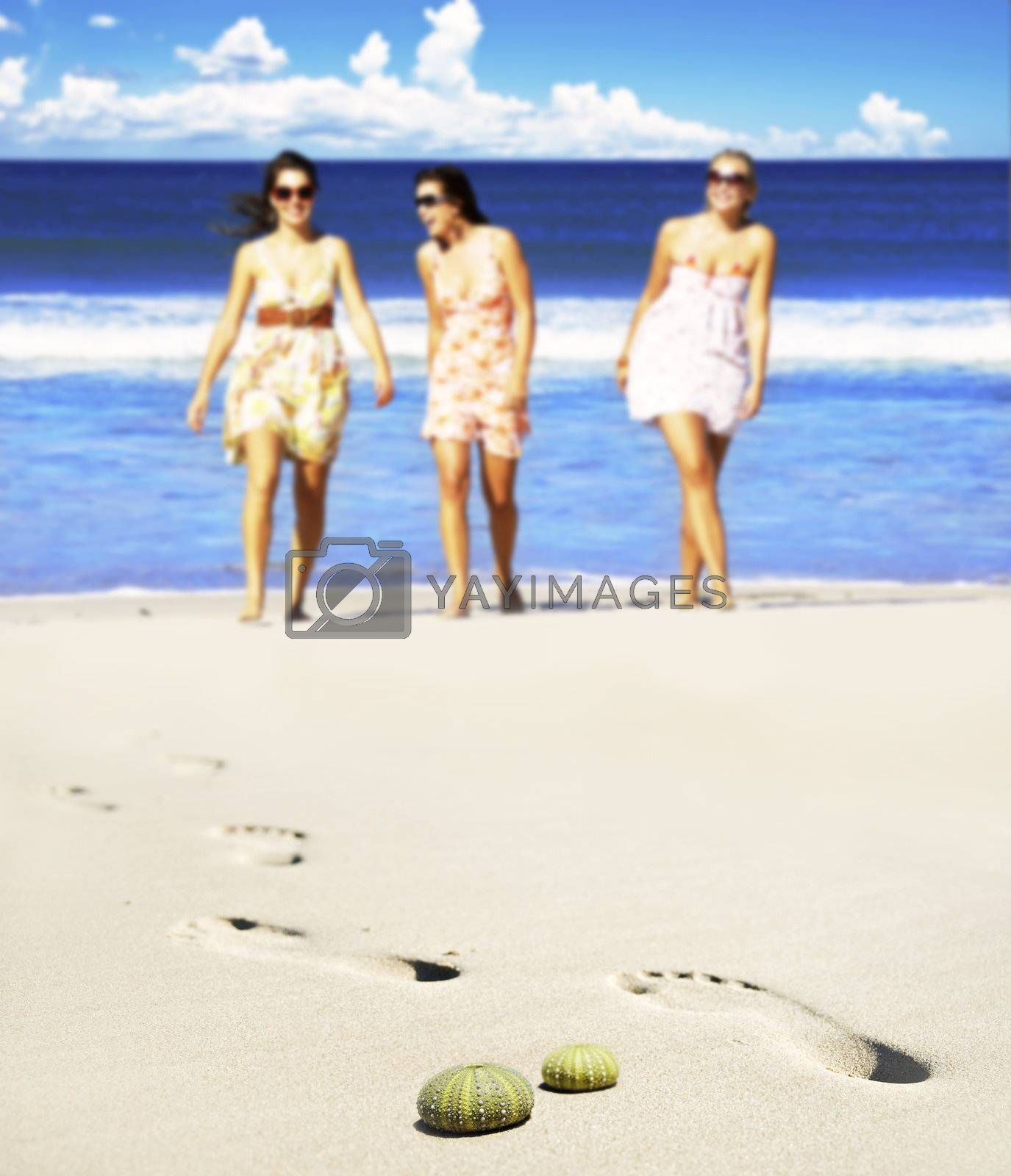 Sea urchin shells on the beach with three young women in the background