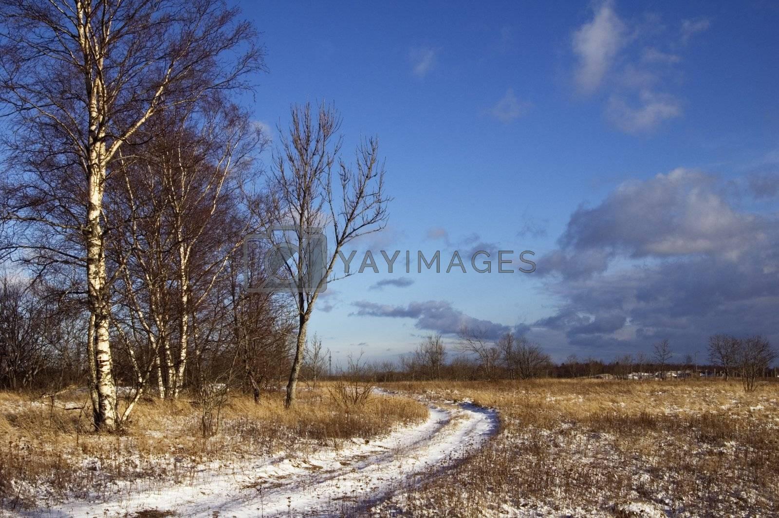 Wood road