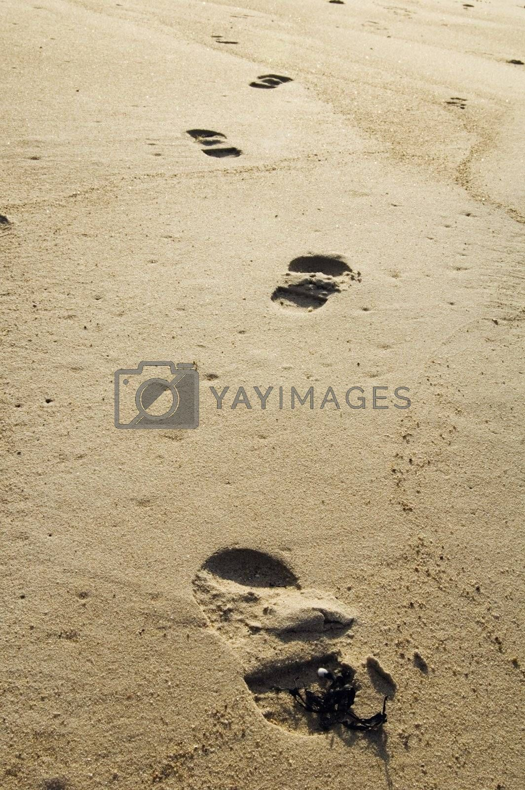 Trace of the person on sand
