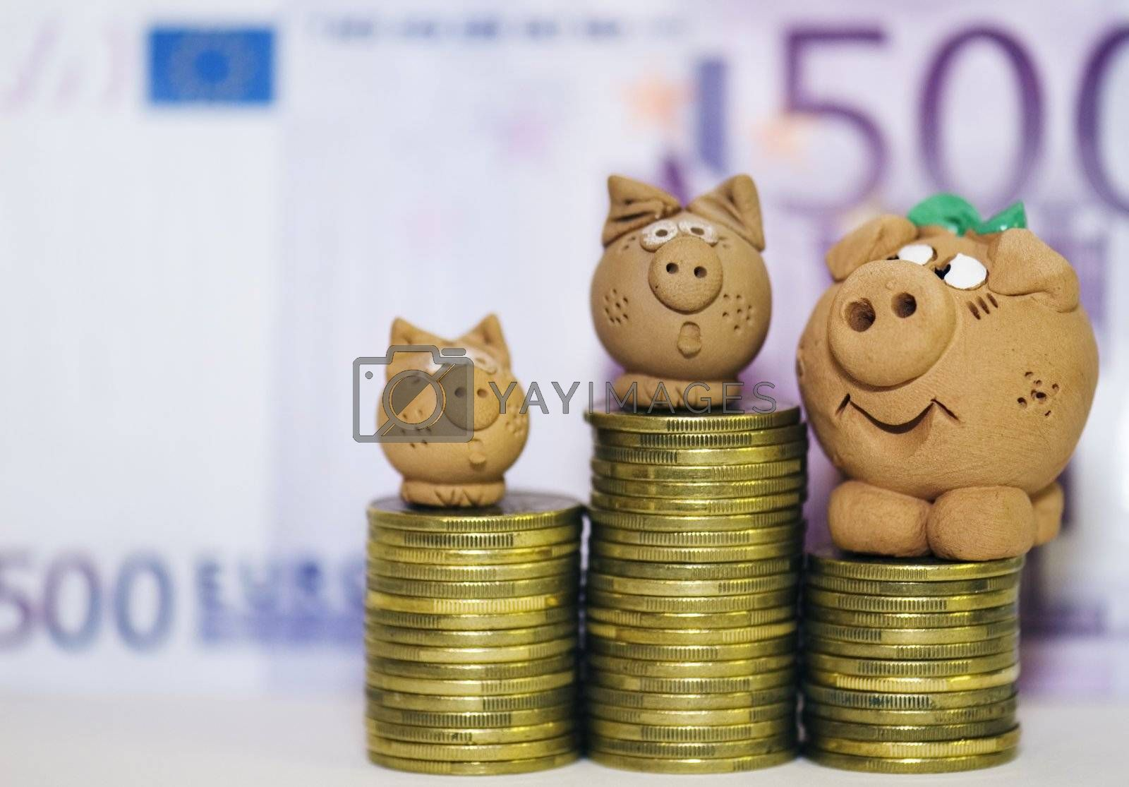 The family of pigs dreams of the big money