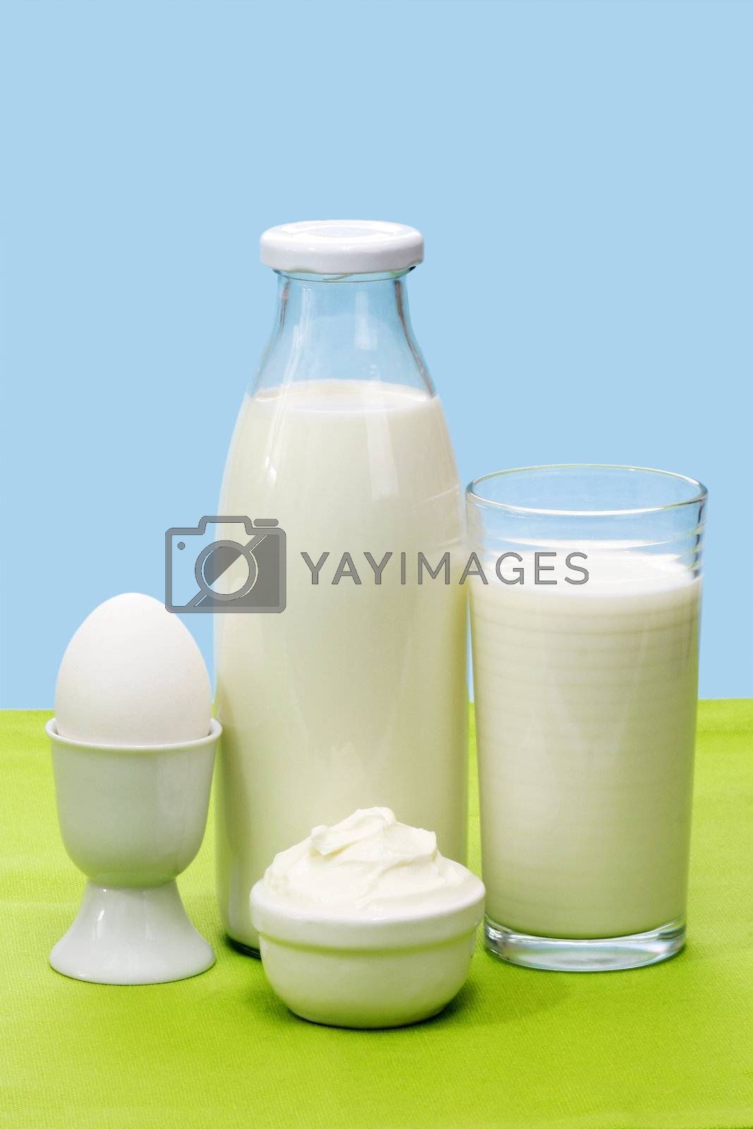 Fres milk, curd cheese and egg over green and blue background