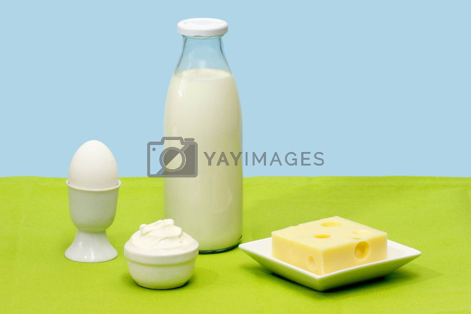 Fresh milk, cheese, curds and egg over blue background