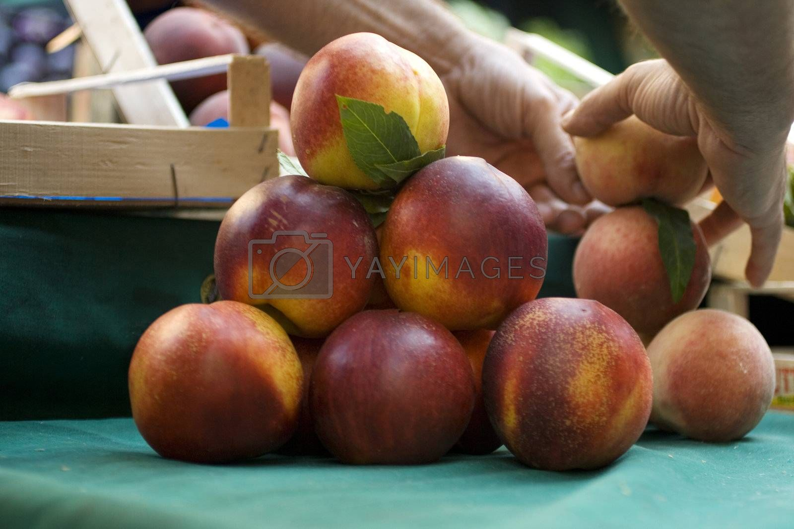 Composition with peaches