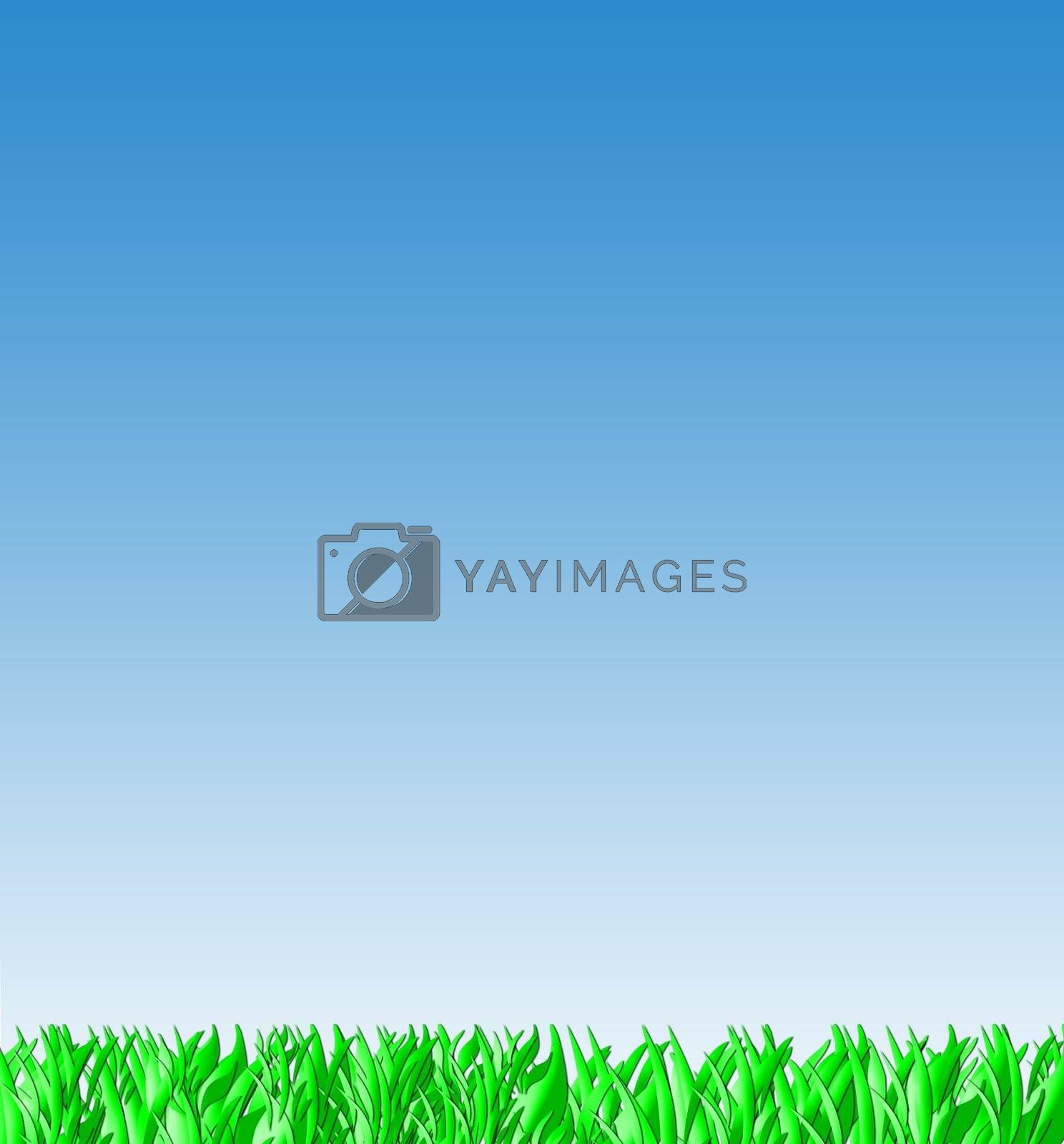 Green grass and blue sky background landscape with copy space.