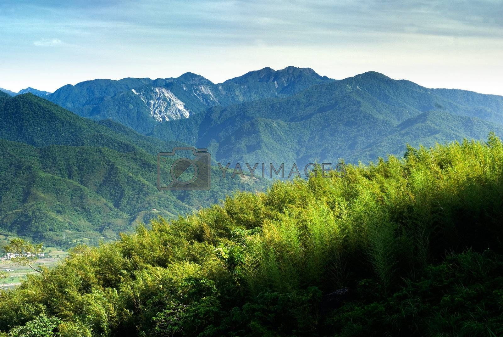 Here ard blue sky white clouds and green trees of mountain.