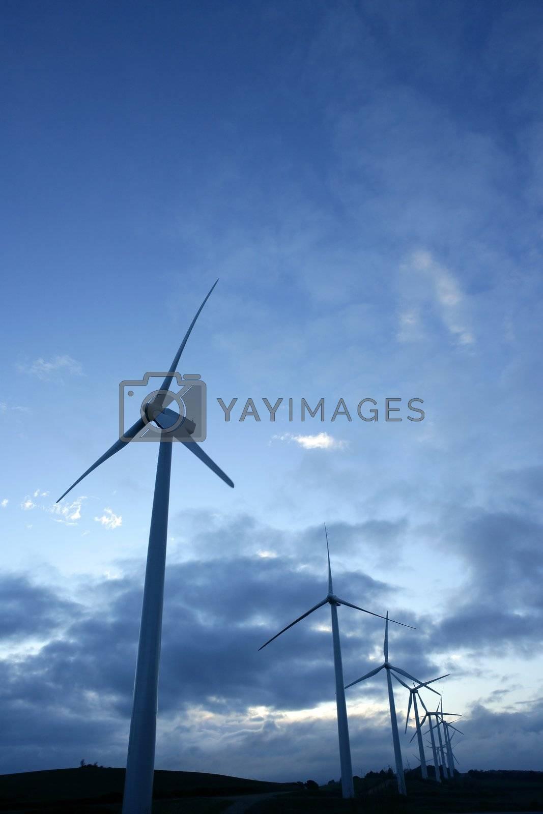 Royalty free image of Wind mills aerogenerator, ecological energy by lunamarina