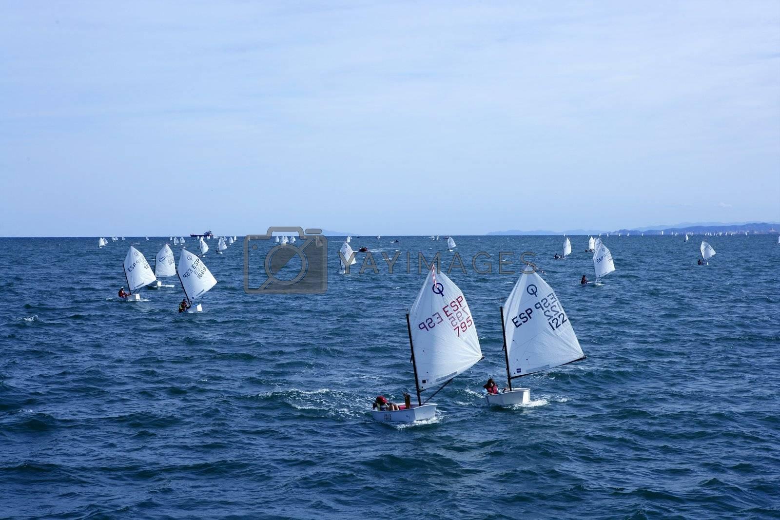 Royalty free image of Optimist, recreation little sailboat regatta, Spain by lunamarina