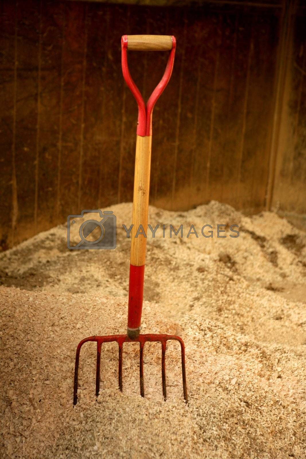 Royalty free image of Horse stable witth straw fork tool, sawdust. by lunamarina