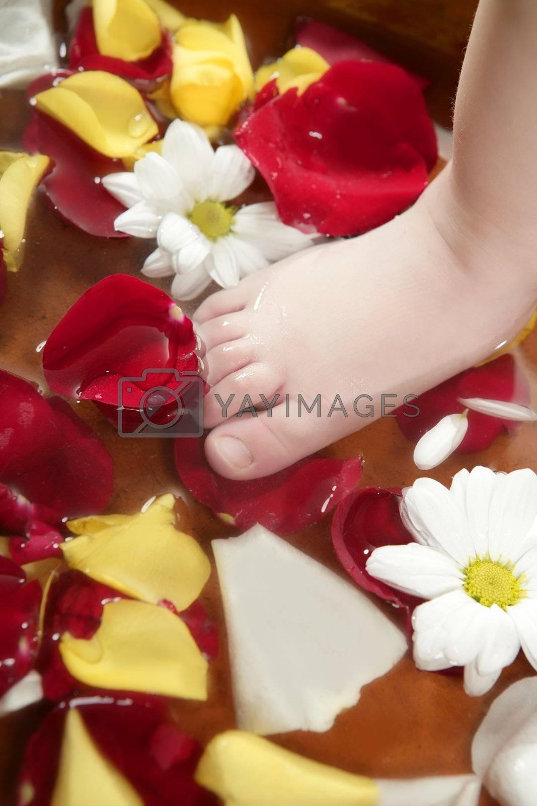 Aromatherapy, flowers children feet bath, colorful rose petal