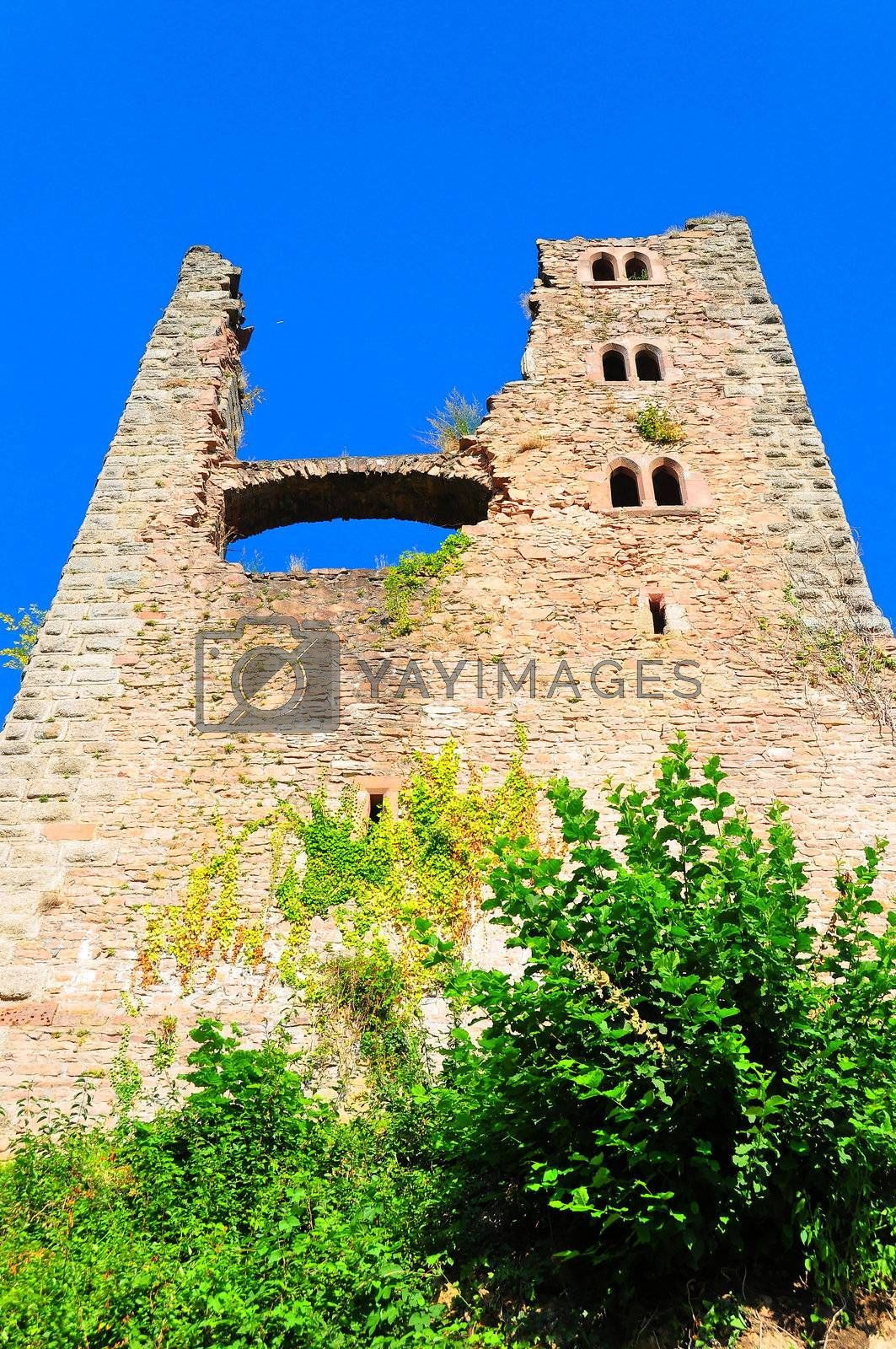 Royalty free image of Schauenburg castle by mpgphoto
