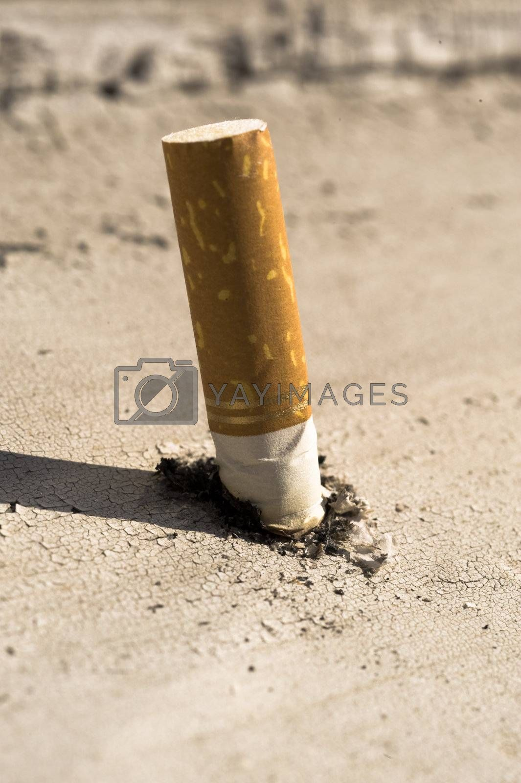 Royalty free image of Put out cigarette by Alenmax