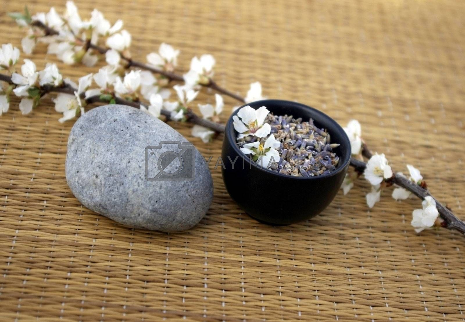 Spa setting with lavender buds, smooth stone, and flowering branch.