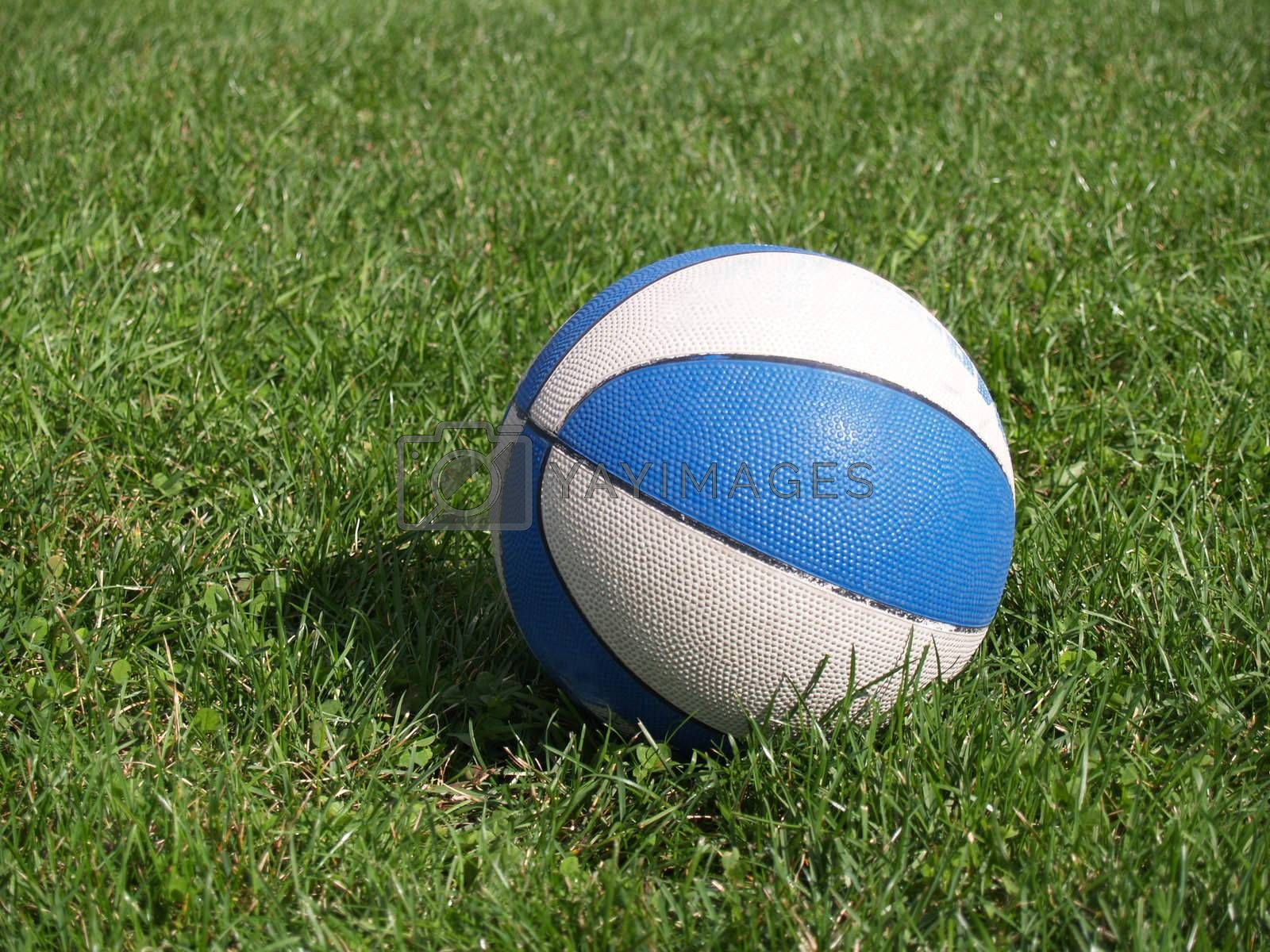 basketball sitting in the grass