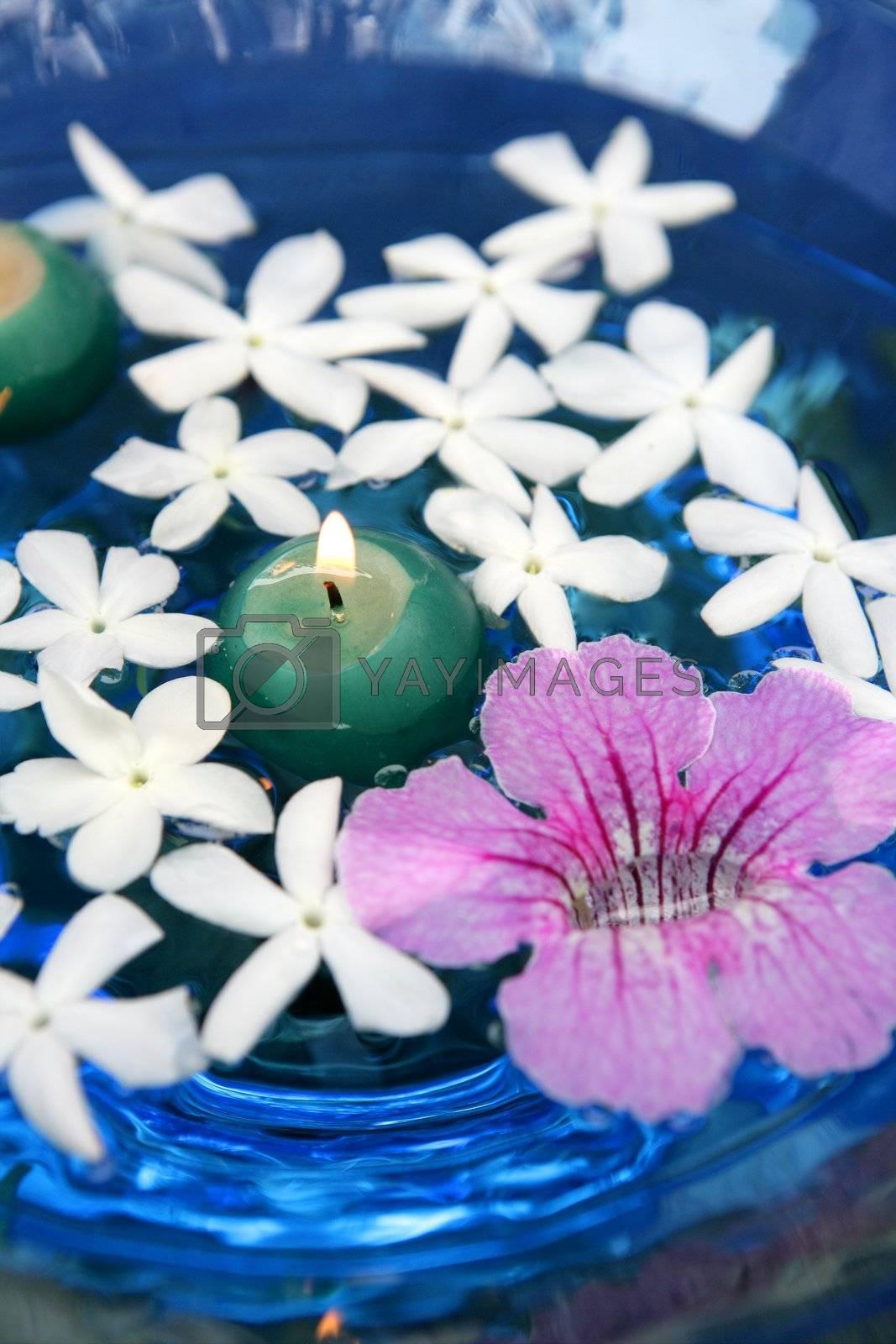 Royalty free image of Jasmine, and pink Asarina, candles and blue water by lunamarina