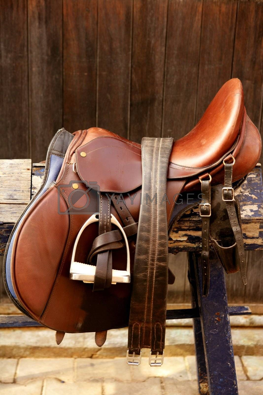 Royalty free image of Horse riders complements, rigs, mounts, leather over wood by lunamarina