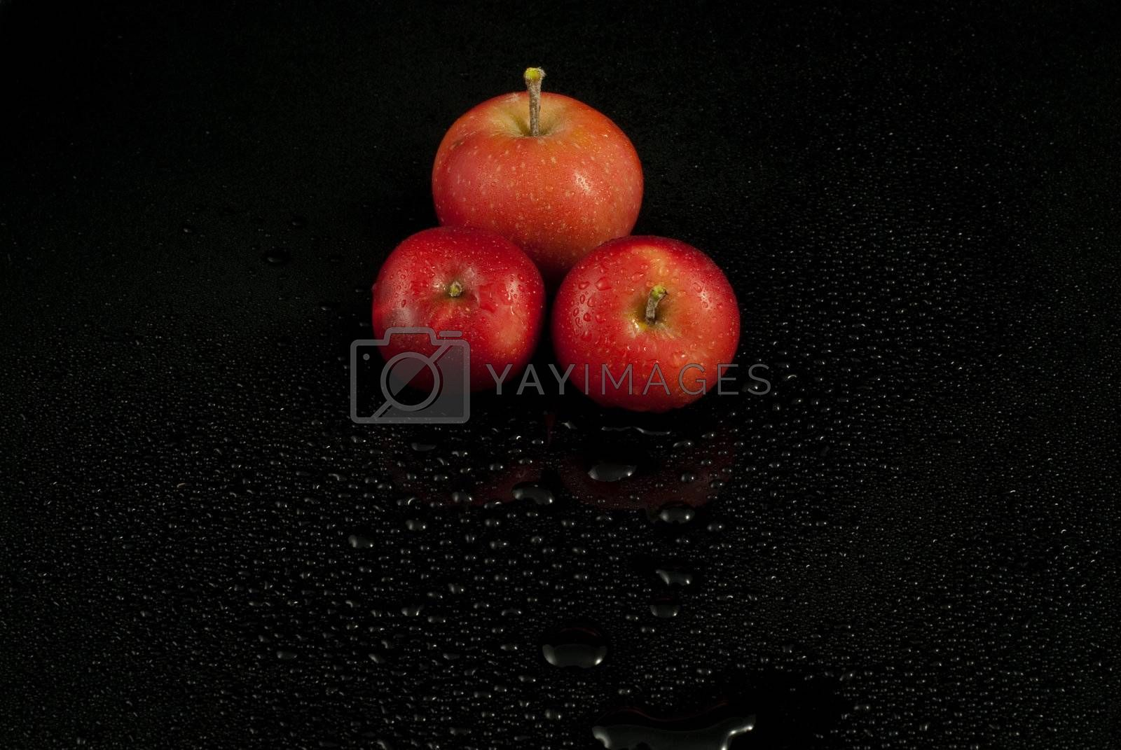 Royalty free image of Wet wild apples by signumstudio