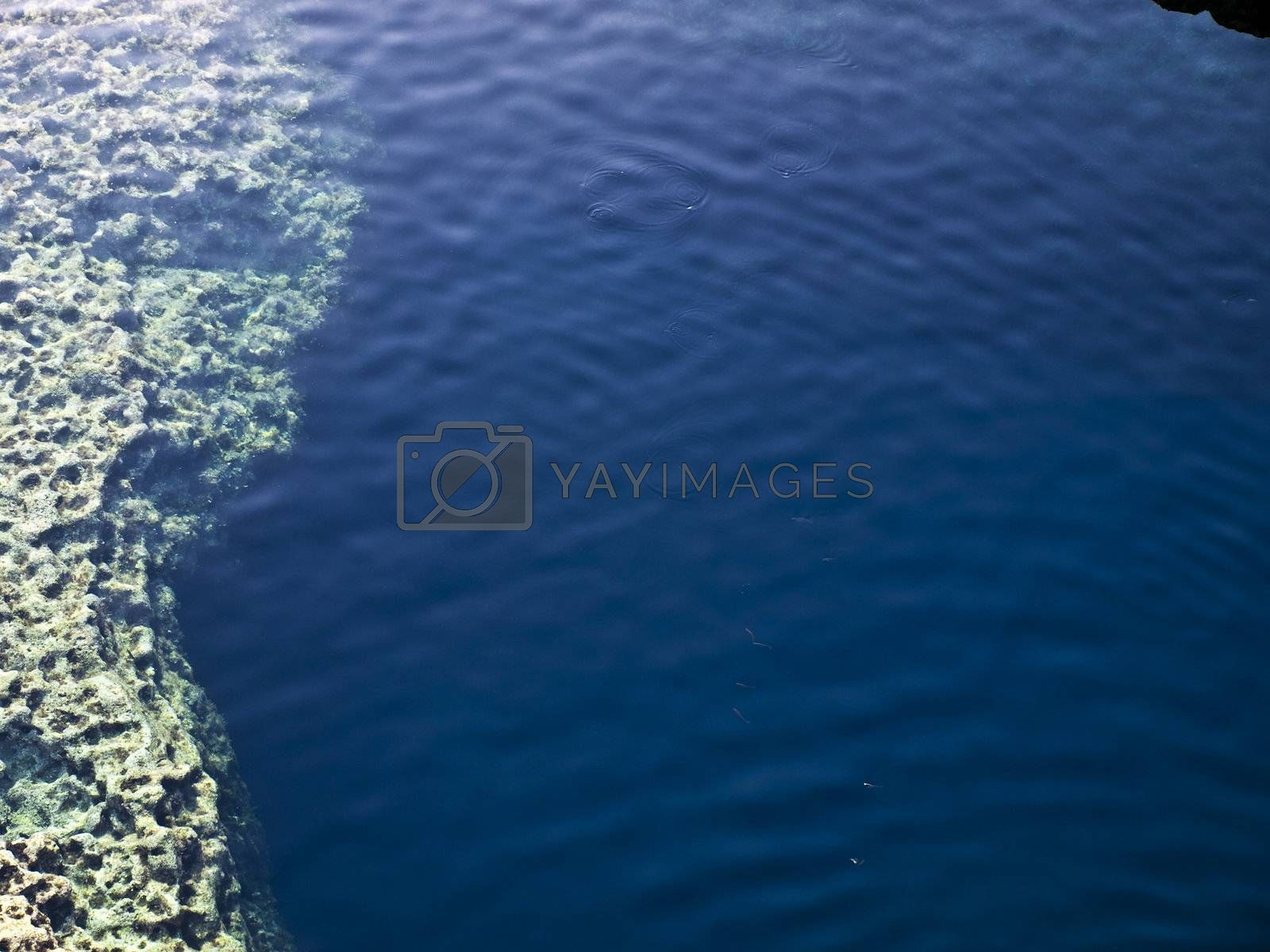 Royalty free image of Blue Hole Reef by PhotoWorks