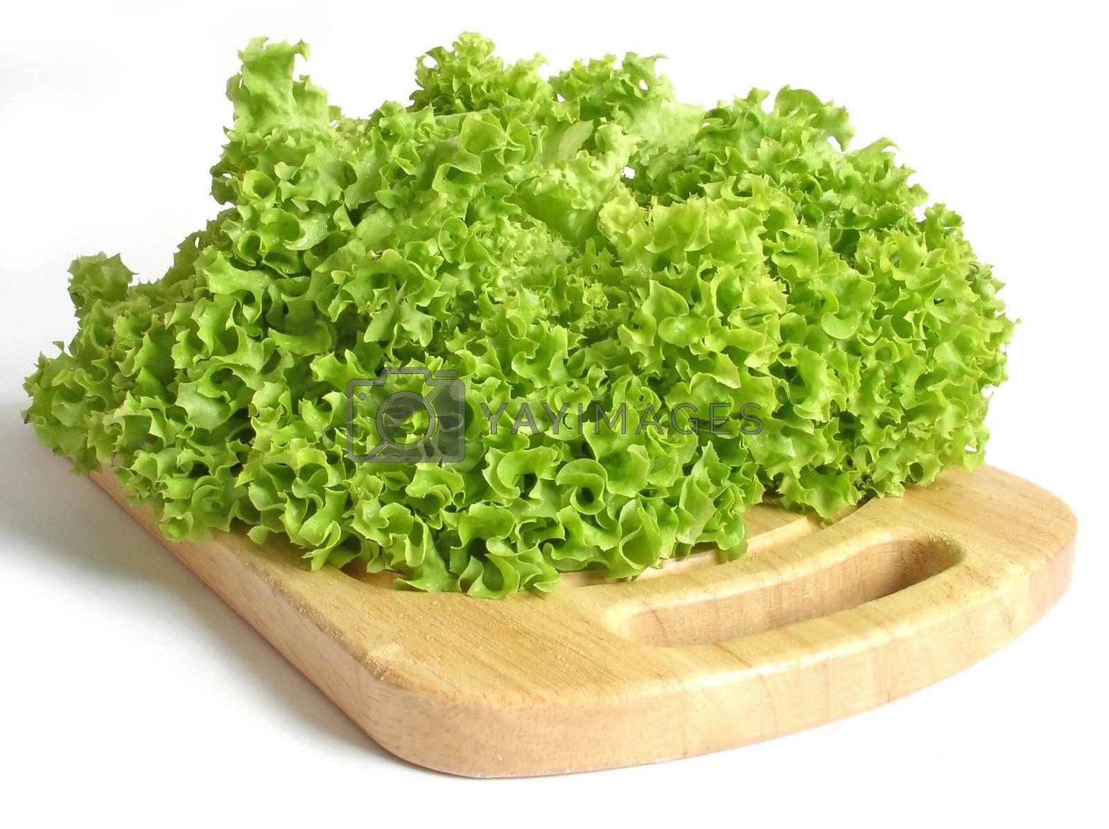 Royalty free image of lettuce by kapp