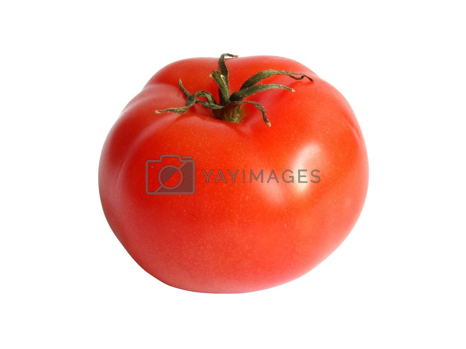 Royalty free image of tomato by kapp