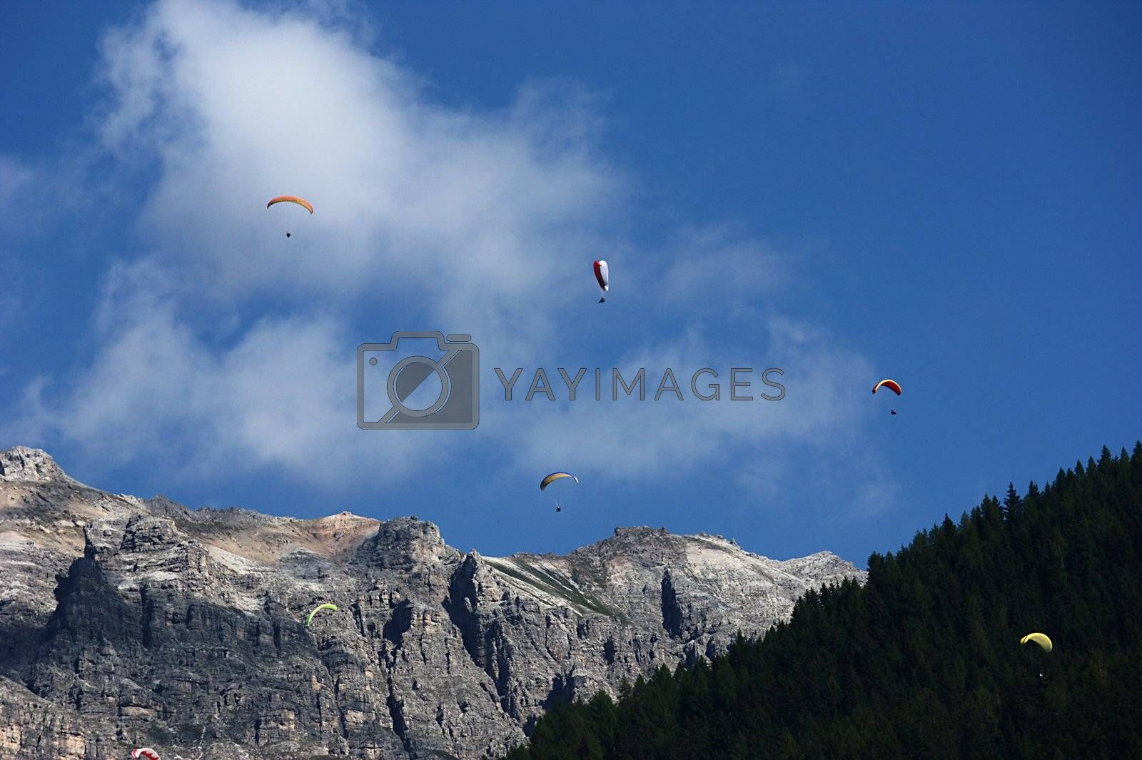 Royalty free image of Paragliding in the Alps by cflux