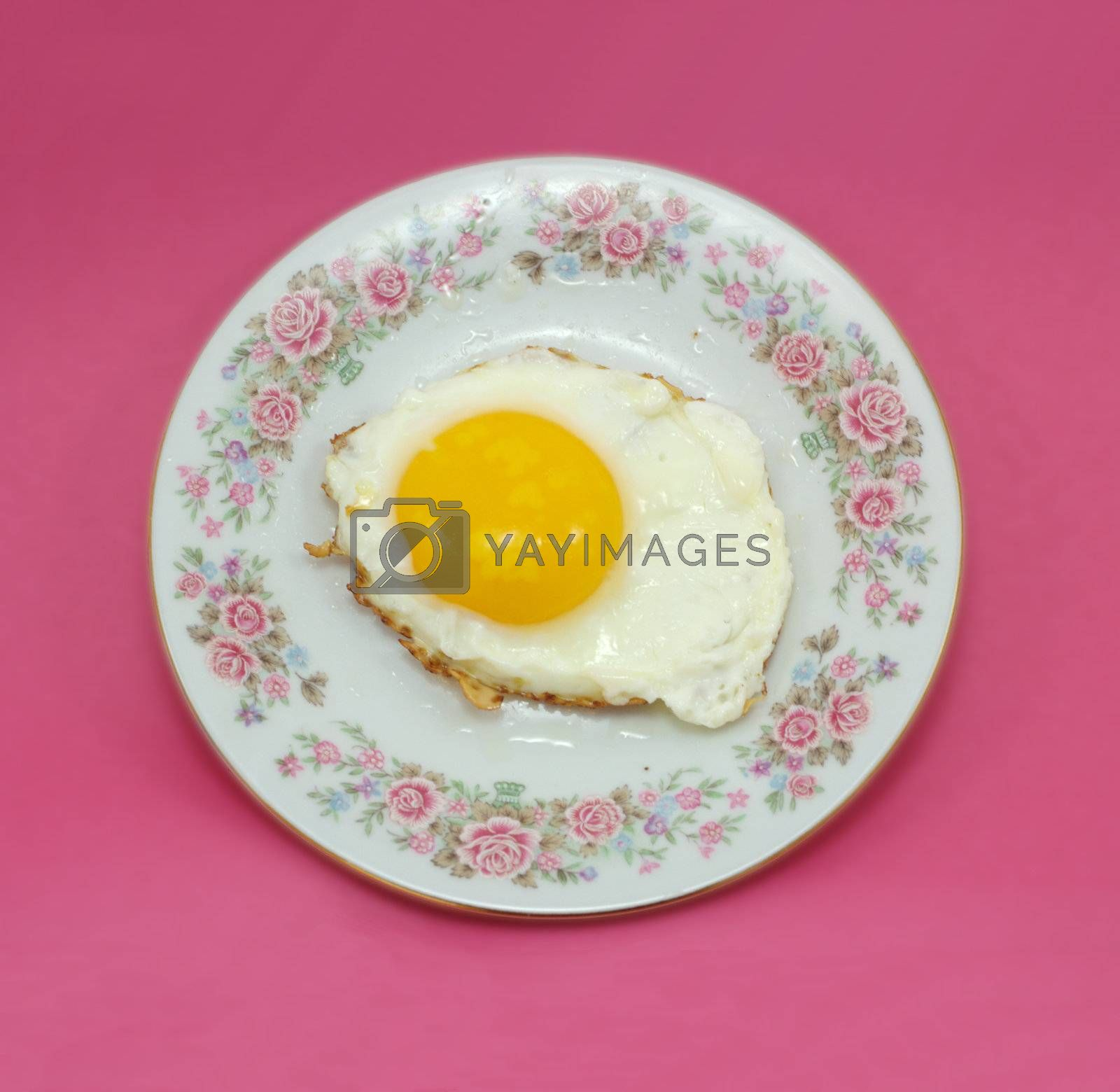 one fried egg on plate isolated on purple