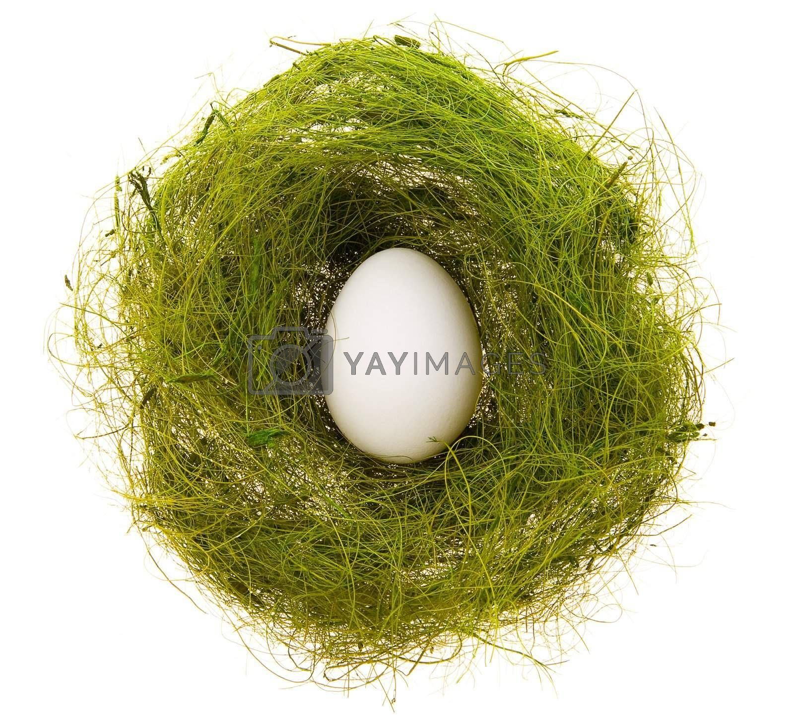 White egg in a small nest from a green grass on a white background