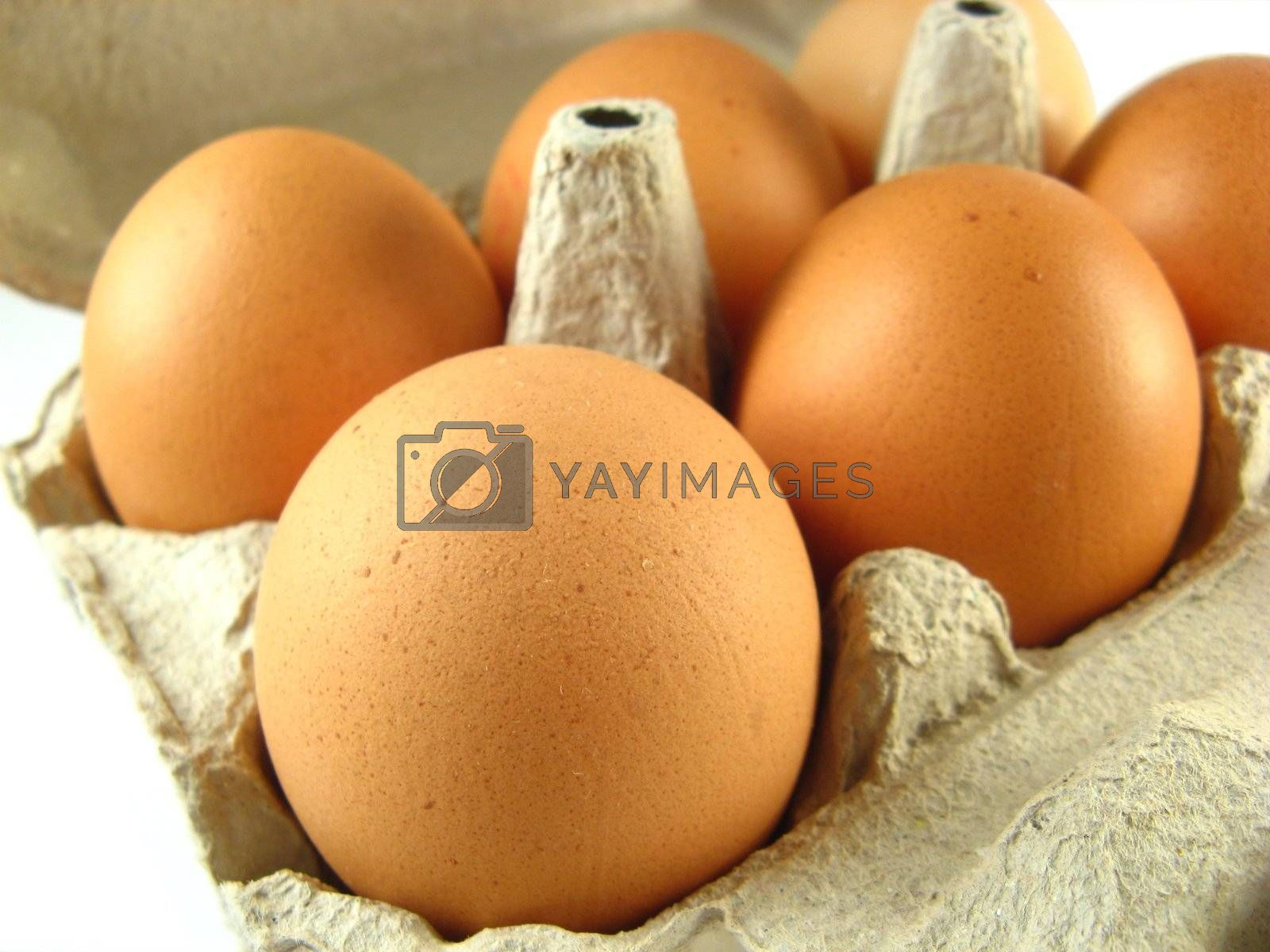 close-up image of some eggs in a box