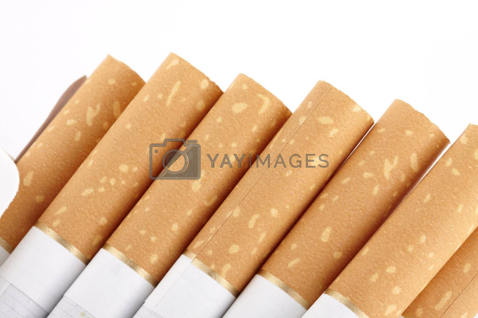 Cigarettes in packet. Close up image
