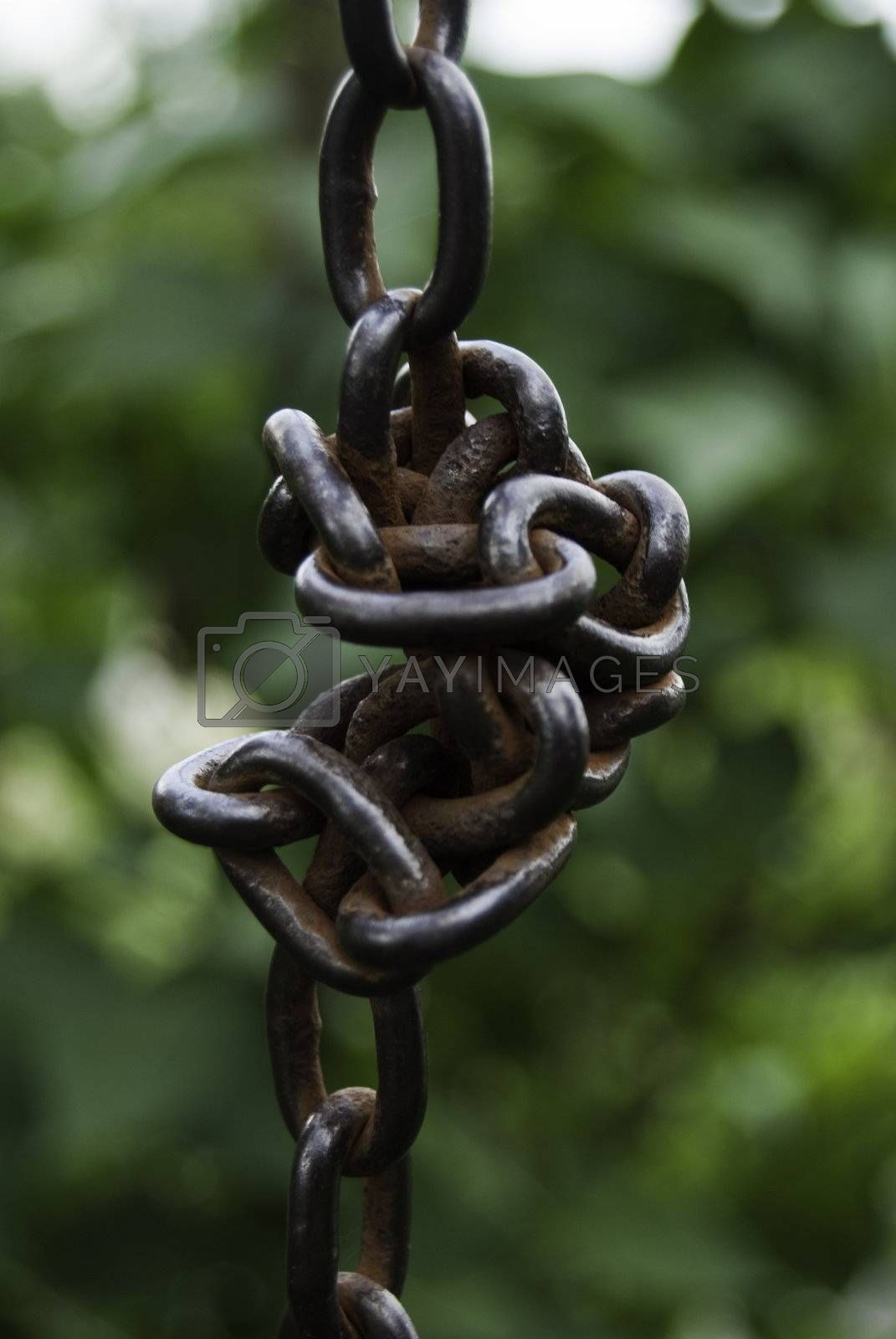 knot chain