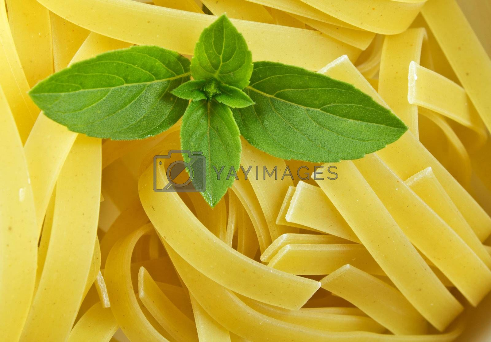 Dry Italian food with a basil in macro detail